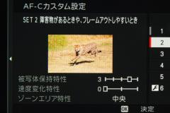 31_s.jpg