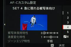 33_s.jpg
