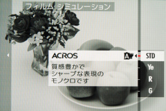40_s.jpg