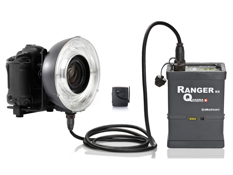 <b>Ranger Quadra Eco-Ringflashの使用例</b>