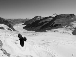 誰しもが一度は訪れたい国、スイス。作者は毎年テーマをきめて取材をしてき... 織作峰子写真展「ユ
