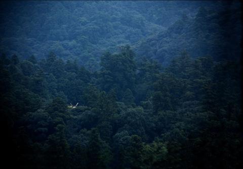 森武史の画像 p1_27